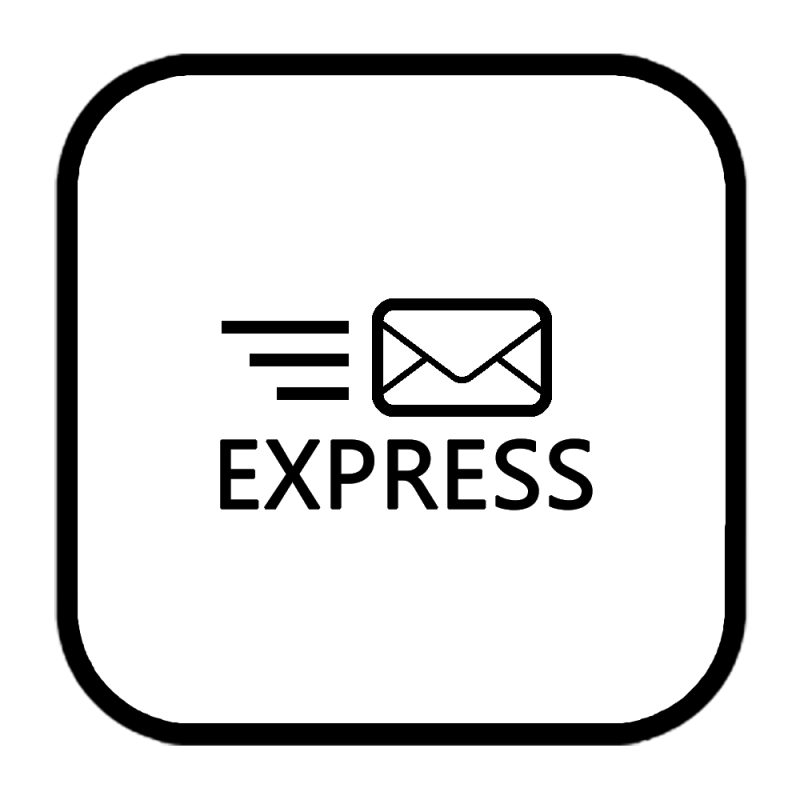 Express (Sameday) Reparatur